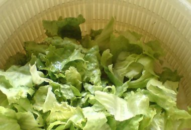 Pourquoi l'essoreuse à salade va changer votre quotidien ?